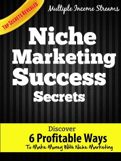 Niche Marketing PLR Course